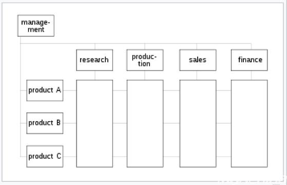 矩阵型组织结构图,矩阵型组织的典型特点是工作团队的成员构成横跨